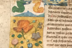 Gent-Buchmalerei-2020-19-klein